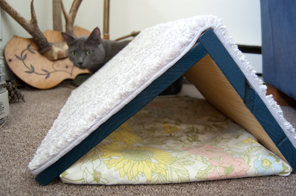 Make A Diy Scratching Post And Shelter For Your Cat