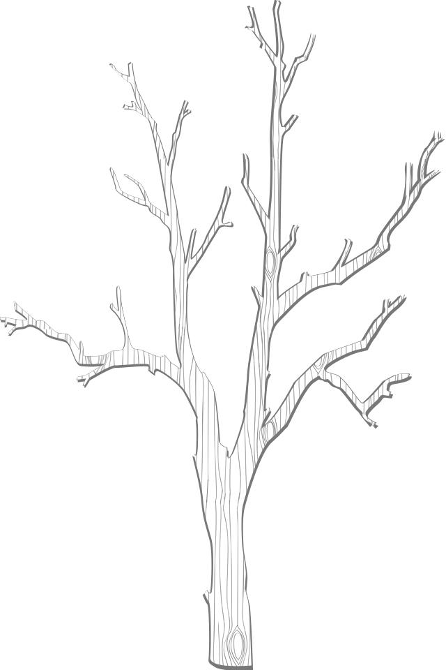 This Thanksgiving Create A DIY Gratitude Tree