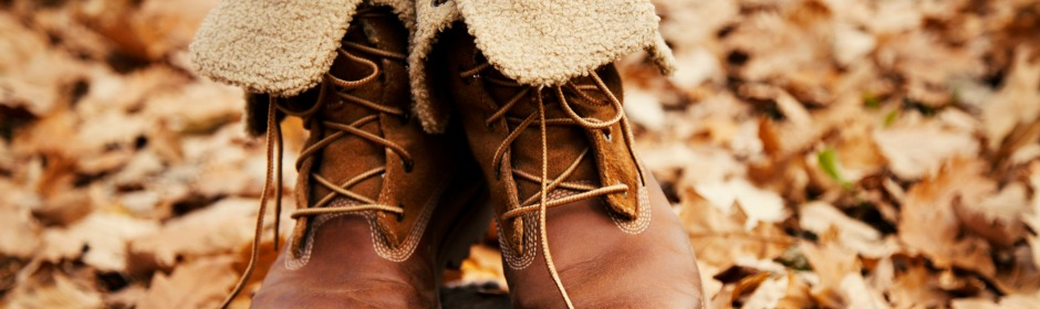 a pair of seasonal women shoes standing in the leaves field