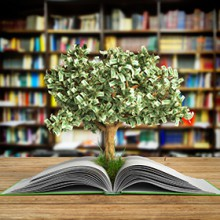 Financial Literacy - 300